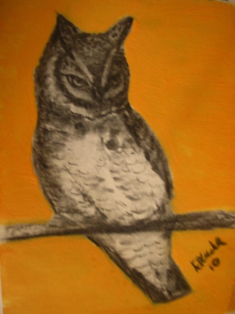 Owl by DeniseKMitchell