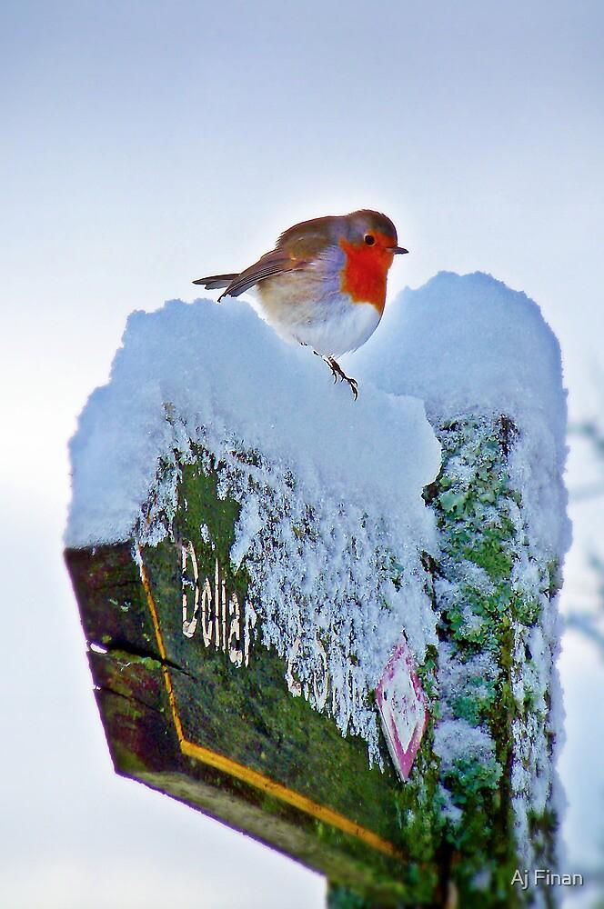 Signs Of Winter. by Aj Finan