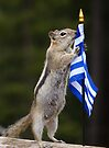 Chippy Speaks Out About Animal Abuse in Greece by Betsy  Seeton