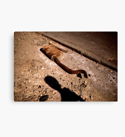 What Cars Leave Behind Canvas Print