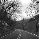 Road Less Traveled by InvictusPhotog