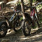 TRIAL BIKES by Colin Van Der Heide