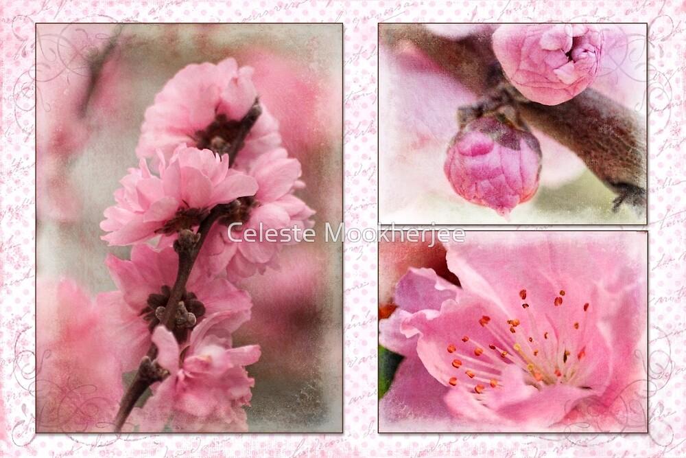 Spring triptych in pink by Celeste Mookherjee