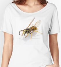wasp Vespula germanica species isolated on white background Women's Relaxed Fit T-Shirt