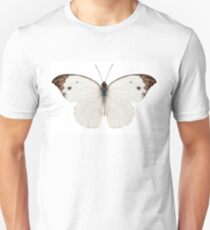 Butterfly species Pieris rapae Unisex T-Shirt