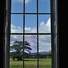 Croome view by Kyoko Beaumont