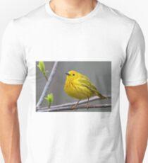 Yellow Warbler T-Shirt