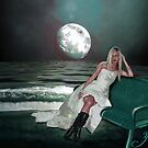 In the Light of The Moon by Sherryll  Johnson