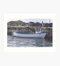 Irish Rover Reflects Art Print