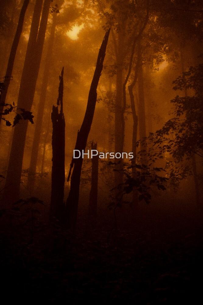 Ealry Morning Splendor by DHParsons