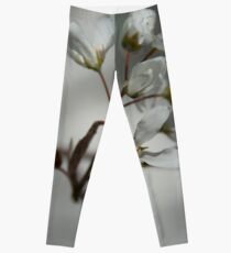 The fragile start of spring Leggings