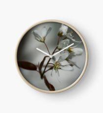 The fragile start of spring Clock