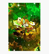 The Four Elements: Earth Photographic Print