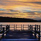 The Dock by Debra Fedchin