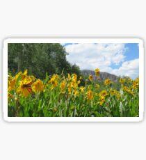Springtime in the Rockies Sticker