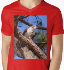 Osprey, the Sea Hawk V-Neck T-Shirt
