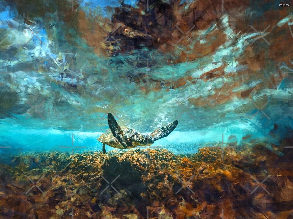 Sea Turtle by Phil Perkins