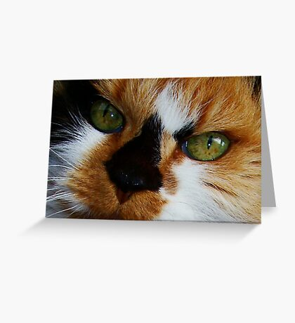 Lovely Lucy Long Greeting Card