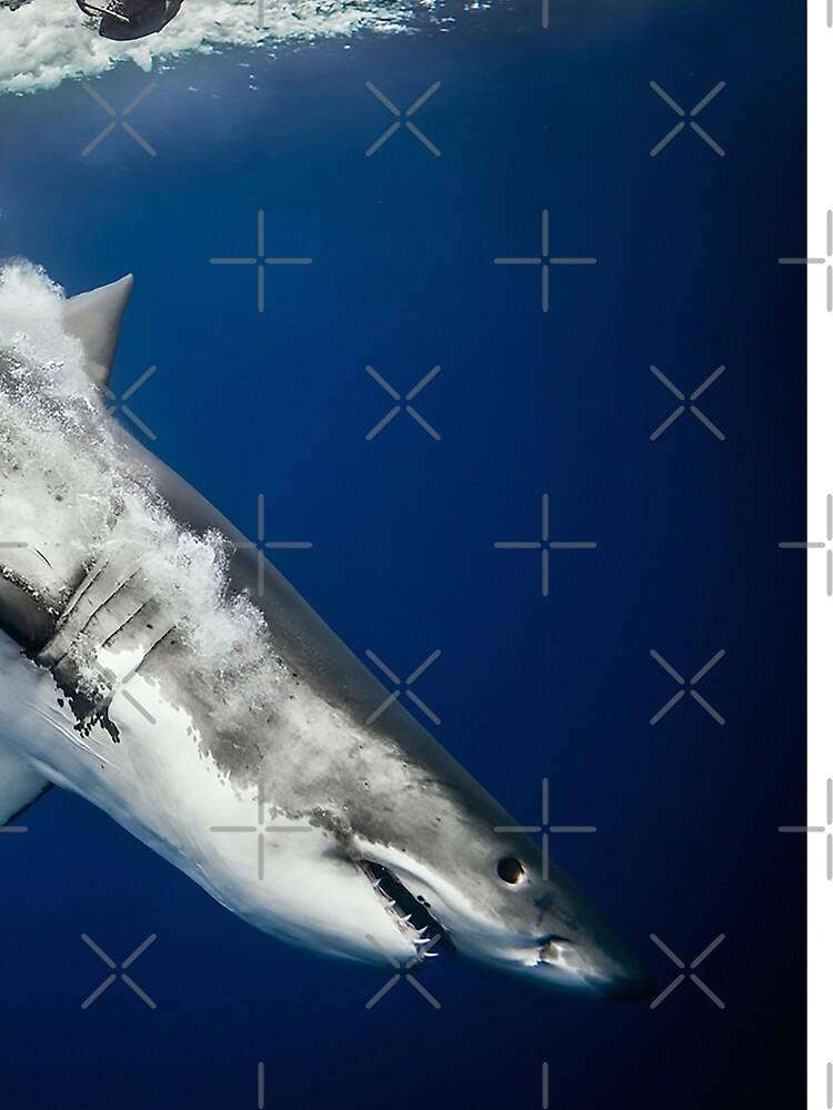 Sharknado! by AnimalMania