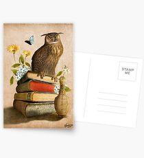 Weise Eule Postkarten