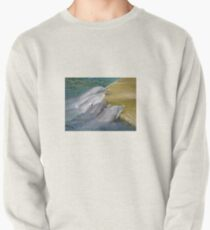 Dolphins Pullover
