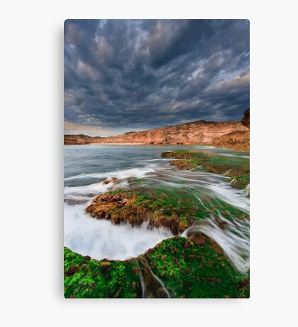 The Wildest Stretch Canvas Print