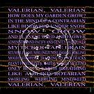 Valerian by Bjondon