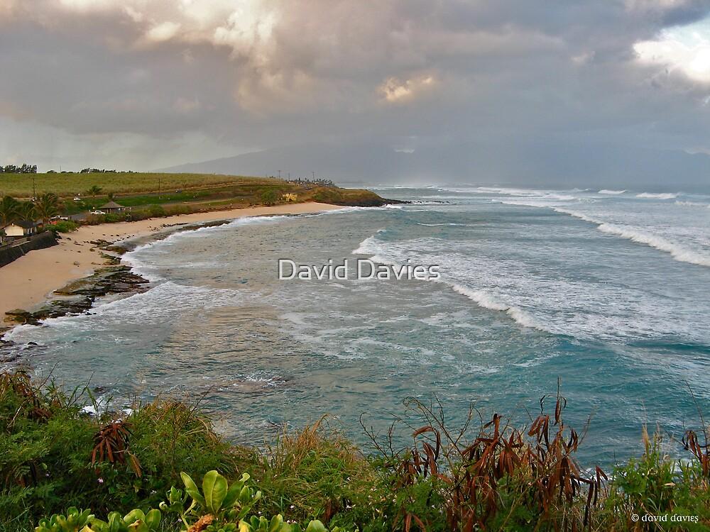 Ho'okipa Beach Park, Maui by David Davies