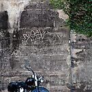Harley on the Rocks by Alexander Meysztowicz-Howen
