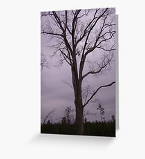 Dreary Greeting Card