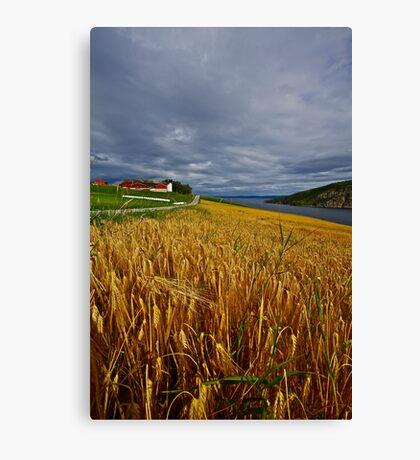 Views: 4470 .The DeeZ 5Cs Award Banner. Verrasundet Sor-Trondelag . Norway. Brown Sugar Story . This image Has Been S O L D .  Brilliant work Canvas Print
