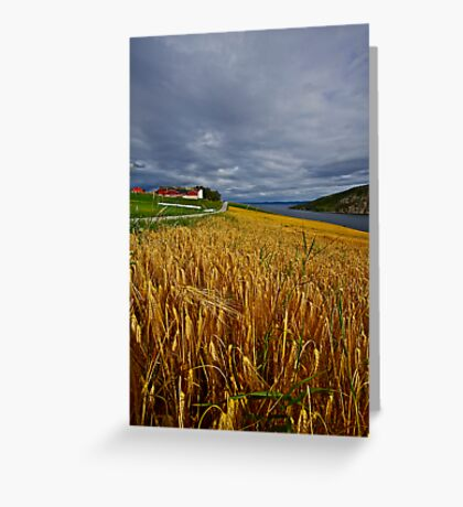 Views: 4470 .The DeeZ 5Cs Award Banner. Verrasundet Sor-Trondelag . Norway. Brown Sugar Story . This image Has Been S O L D .  Brilliant work Greeting Card