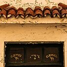 Tenerife: Camel Days by Kasia-D