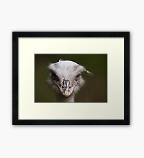 And Your Point is? Framed Print