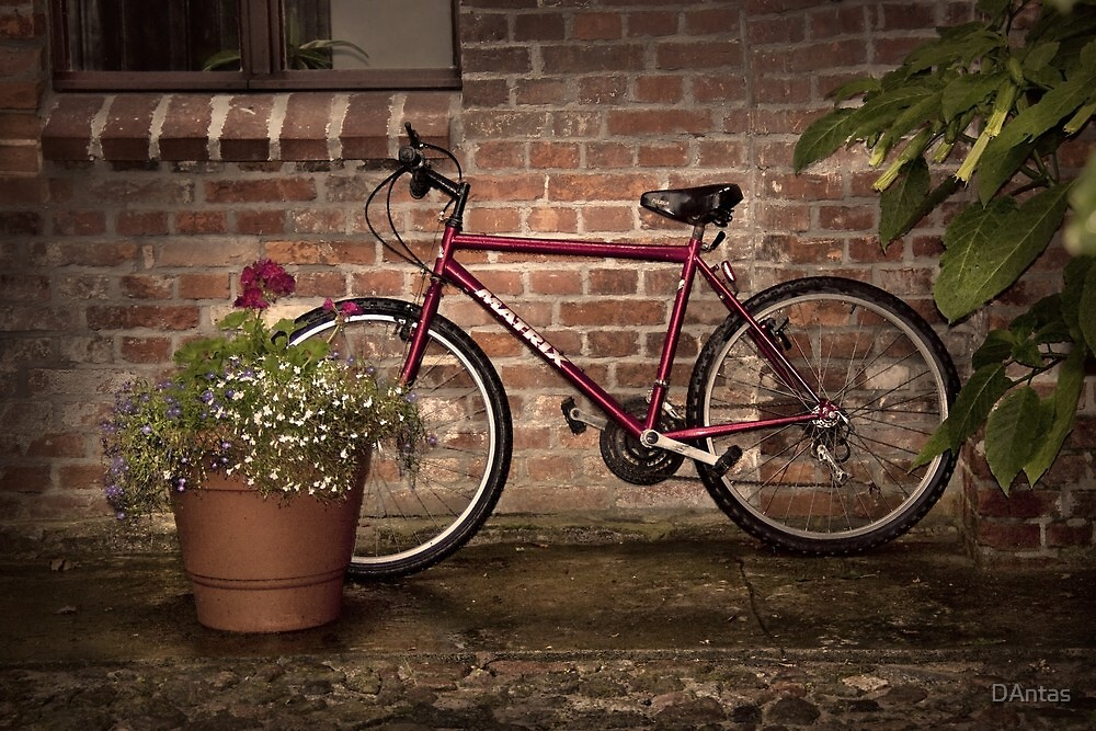 Red Bike Story by Danuta Antas