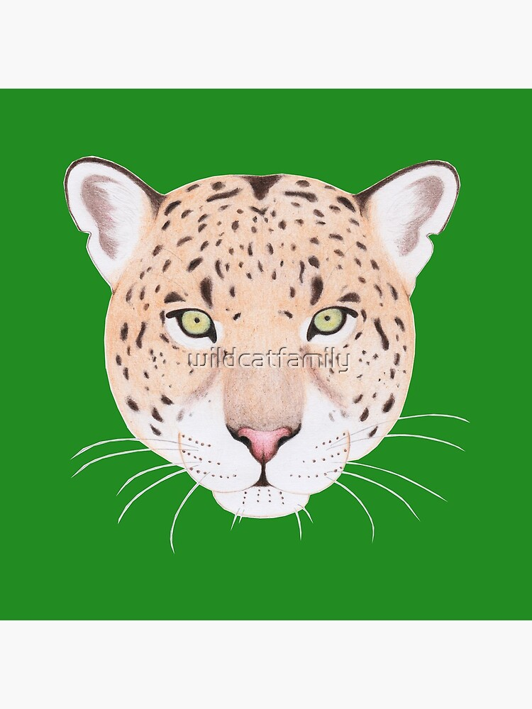 African Leopard by wildcatfamily