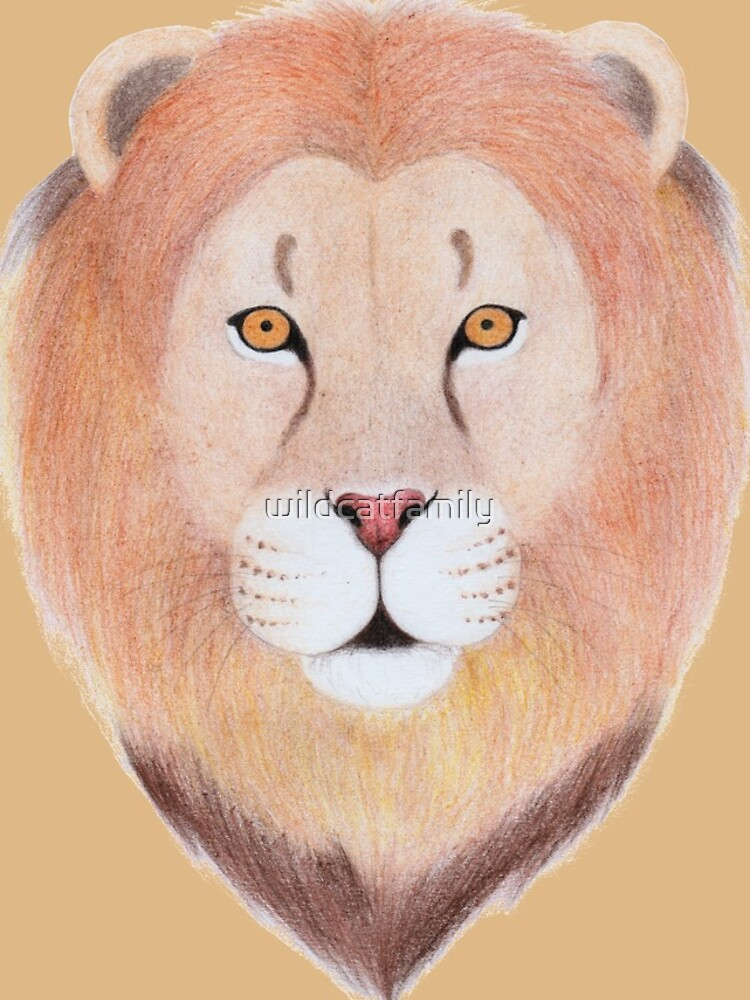 African Lion by wildcatfamily