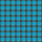 Black & Blue Plaid by KPcaptures