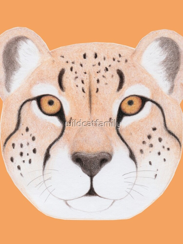 African Cheetah by wildcatfamily