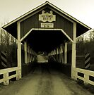 If only a bridge could talk... by Marcia Rubin
