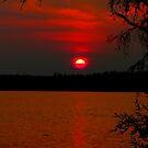 Blood Red Sunset by MaeBelle