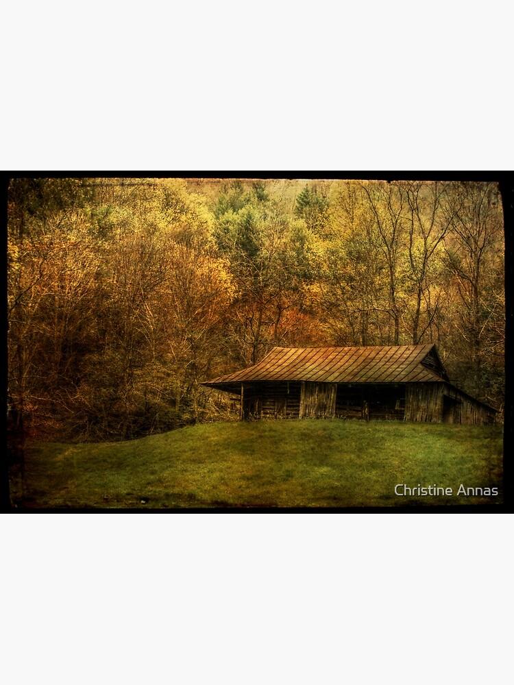 Wood Smoke Burnin',  Leaves are Turnin' by 2Bricks
