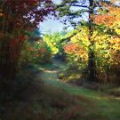 Hossler's in Autumn by Lori Deiter