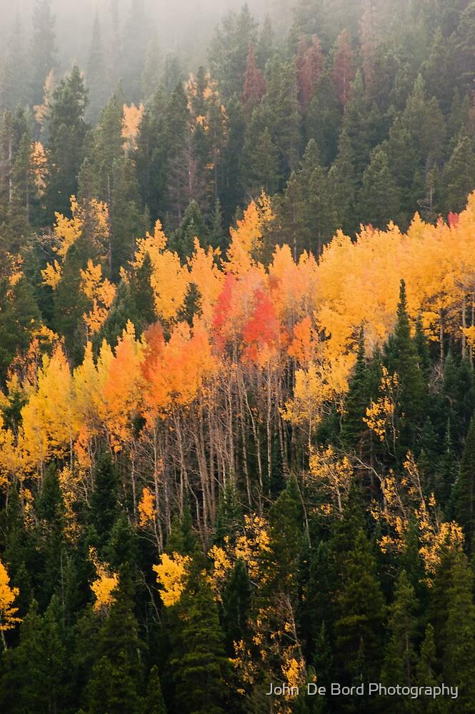 A Colorado Fall by John  De Bord Photography