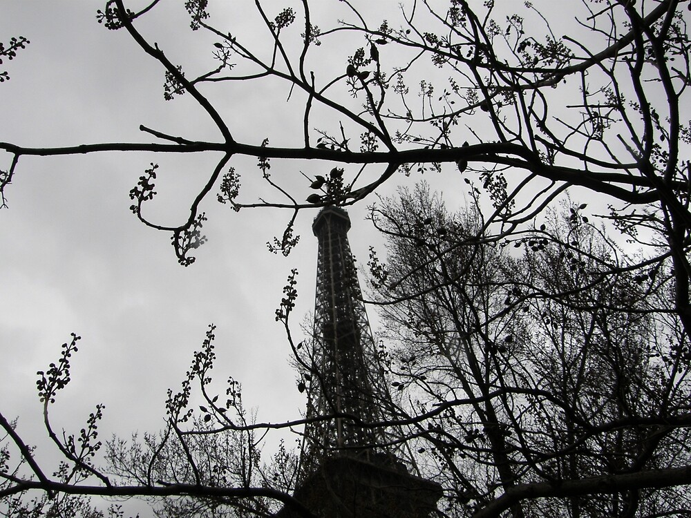 Eiffel tower  (Retro) -Paris by mikequigley