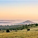 Fog in the Valley by Kym Howard
