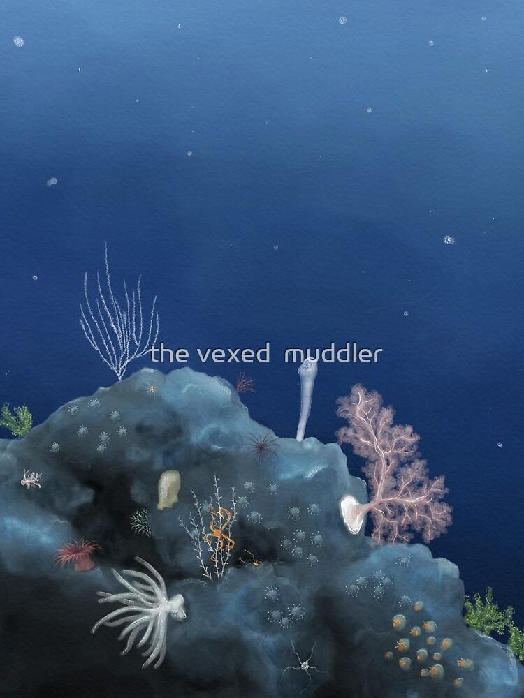 Deep ocean vista - Johnston Atoll by thevexedmuddler