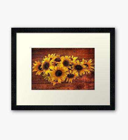 Solar Power Framed Print