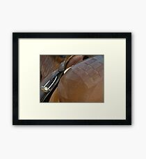 The Show Horse Framed Print