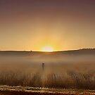 Sepia Sunrise by Kym Howard